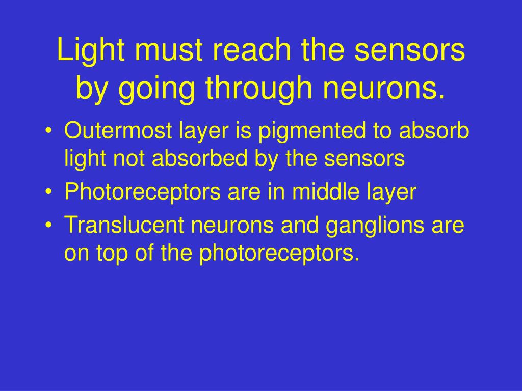 Light must reach the sensors by going through neurons.