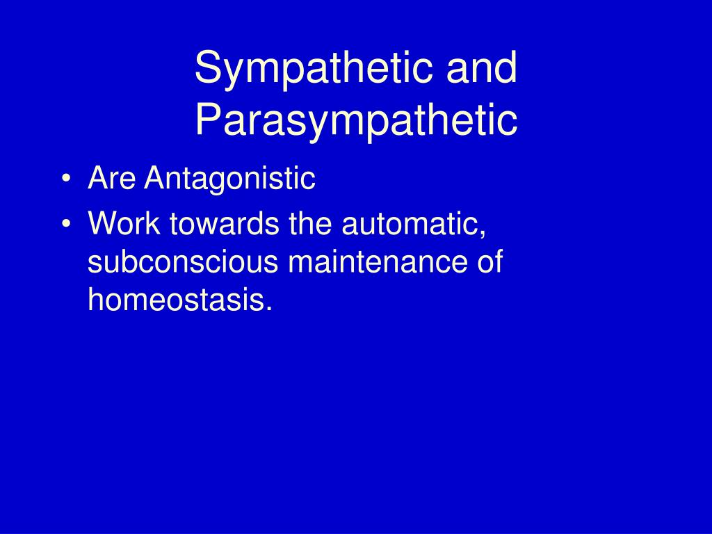 Sympathetic and Parasympathetic