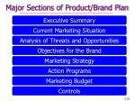 major sections of product brand plan