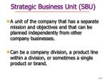 strategic business unit sbu