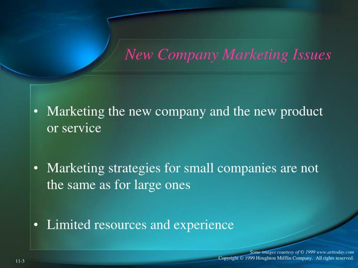 New company marketing issues