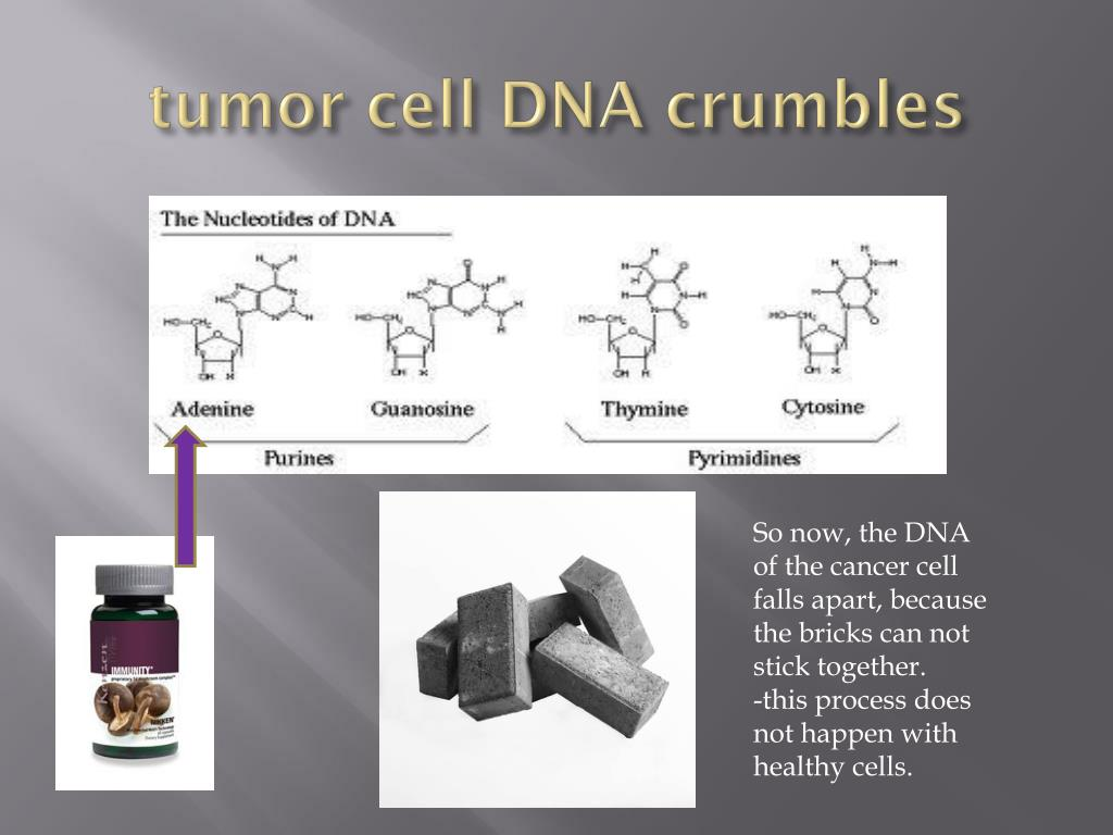 tumor cell DNA crumbles