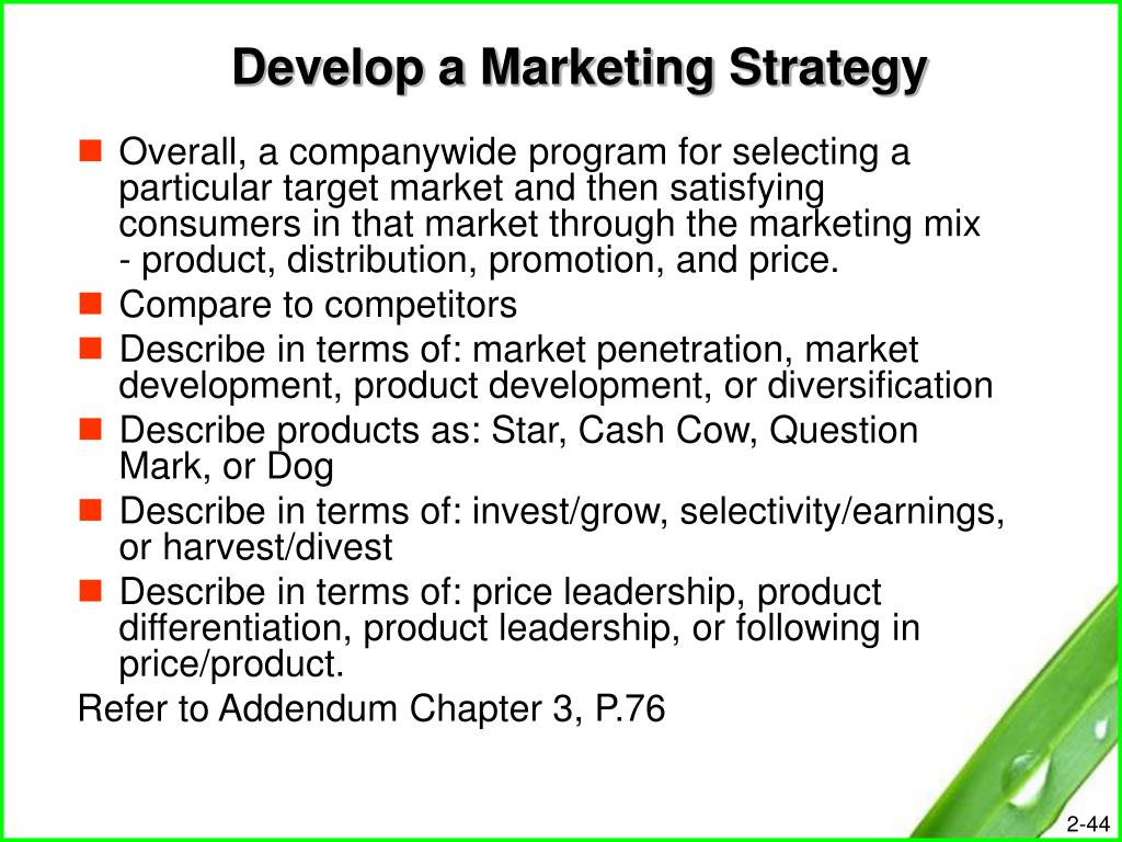 Develop a Marketing Strategy