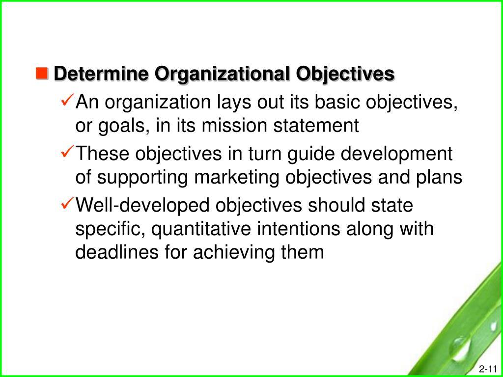 Determine Organizational Objectives