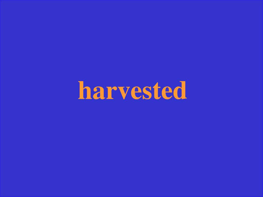 harvested