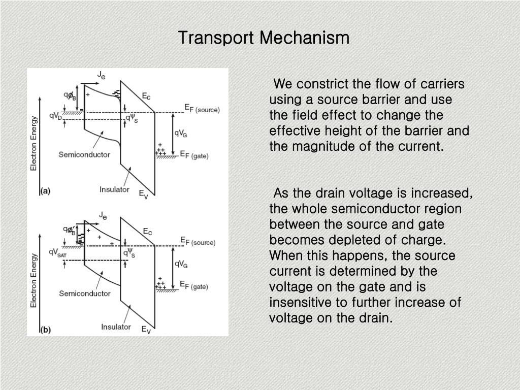 Transport Mechanism