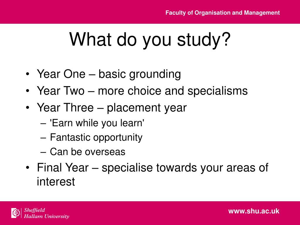 What do you study?