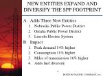 new entities expand and diversify the spp footprint