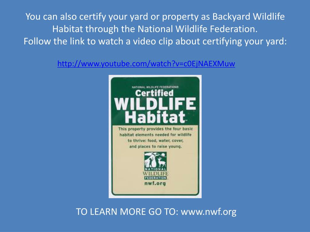You can also certify your yard or property as Backyard Wildlife Habitat through the National Wildlife Federation.