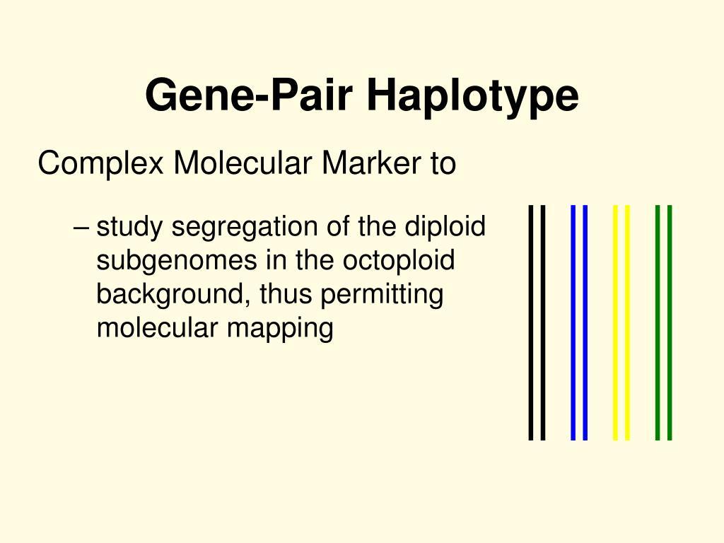Gene-Pair Haplotype