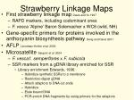 strawberry linkage maps