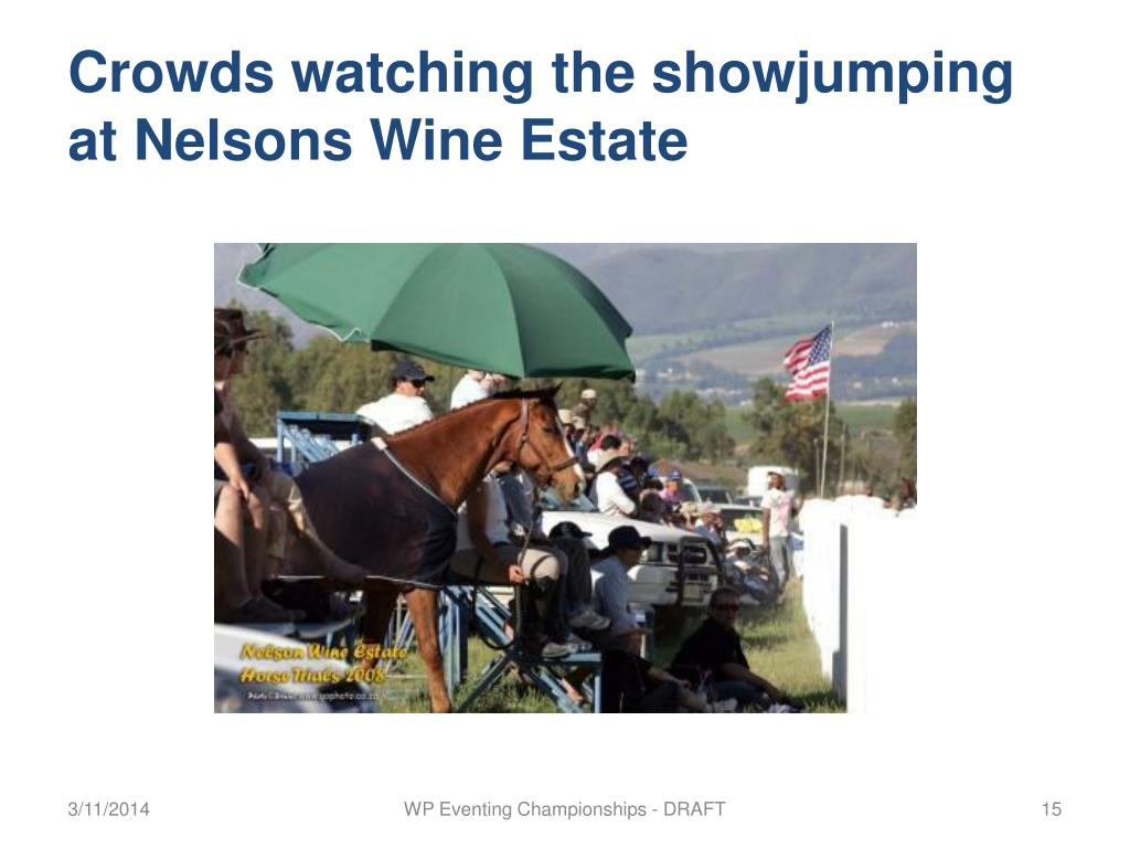 Crowds watching the showjumping at Nelsons Wine Estate