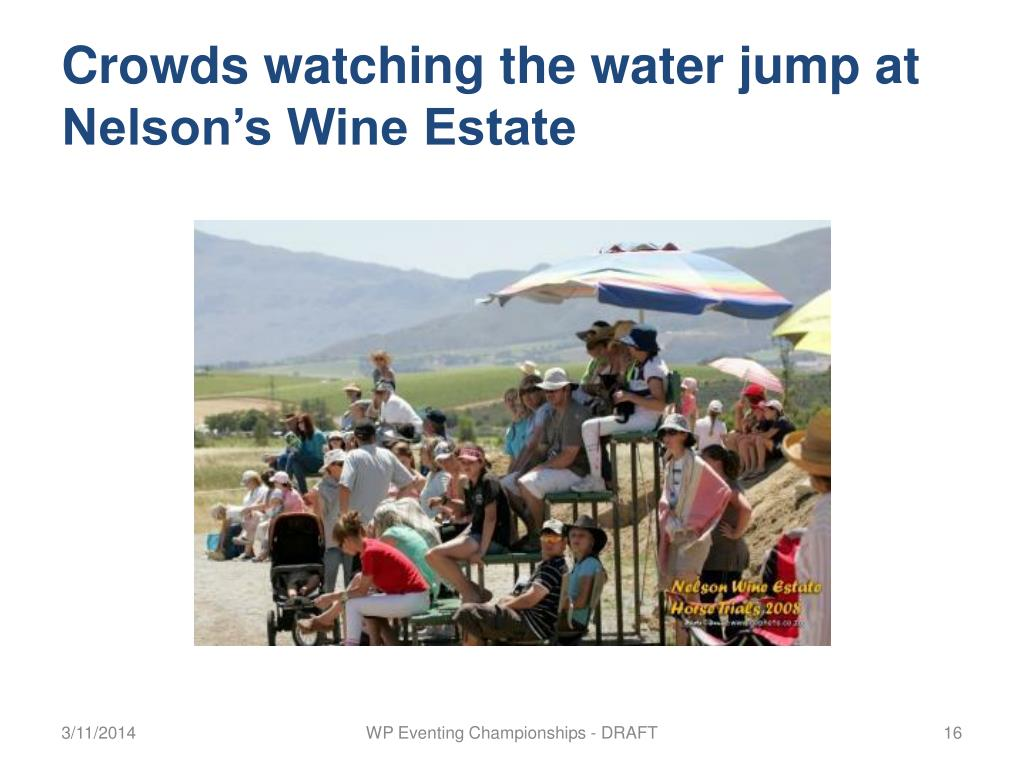 Crowds watching the water jump at Nelson's Wine Estate