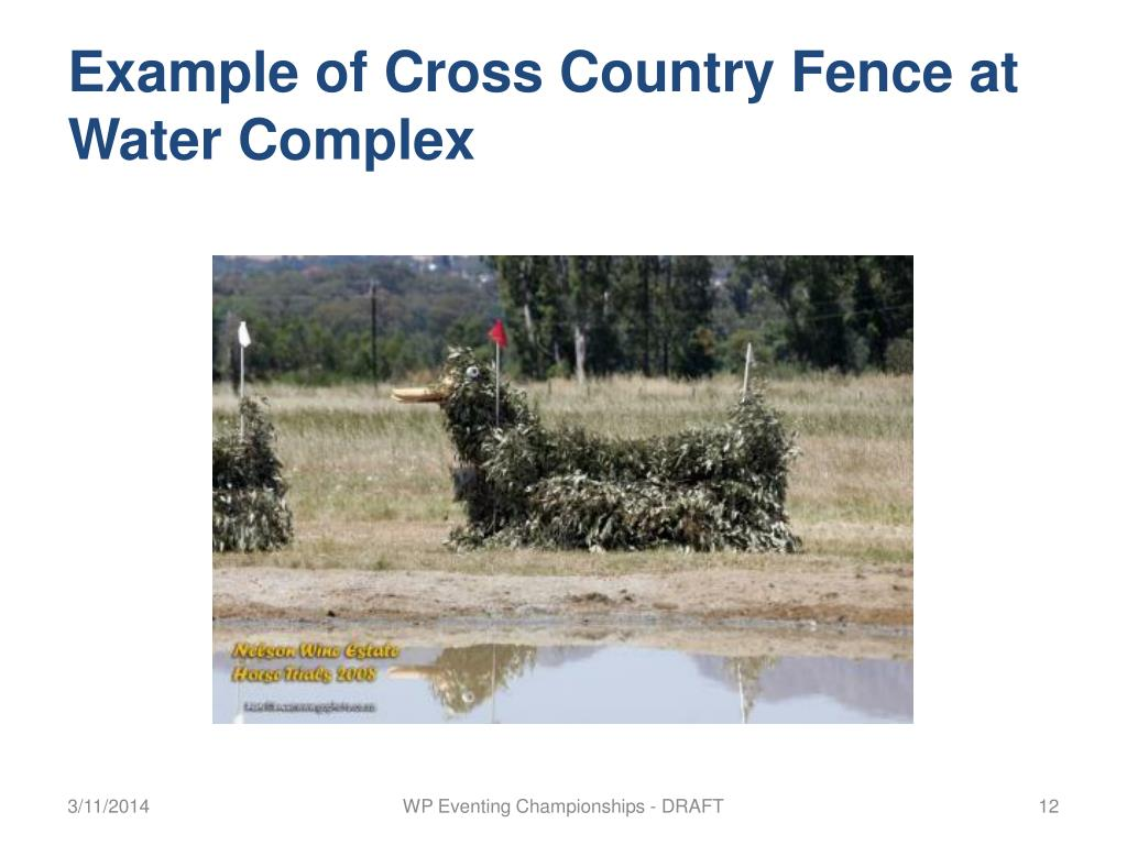 Example of Cross Country Fence at Water Complex