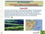 an example veracel s vision of sustainability