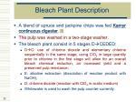 bleach plant description