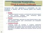corporate sustainability global industry challenges