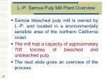 l p samoa pulp mill plant overview