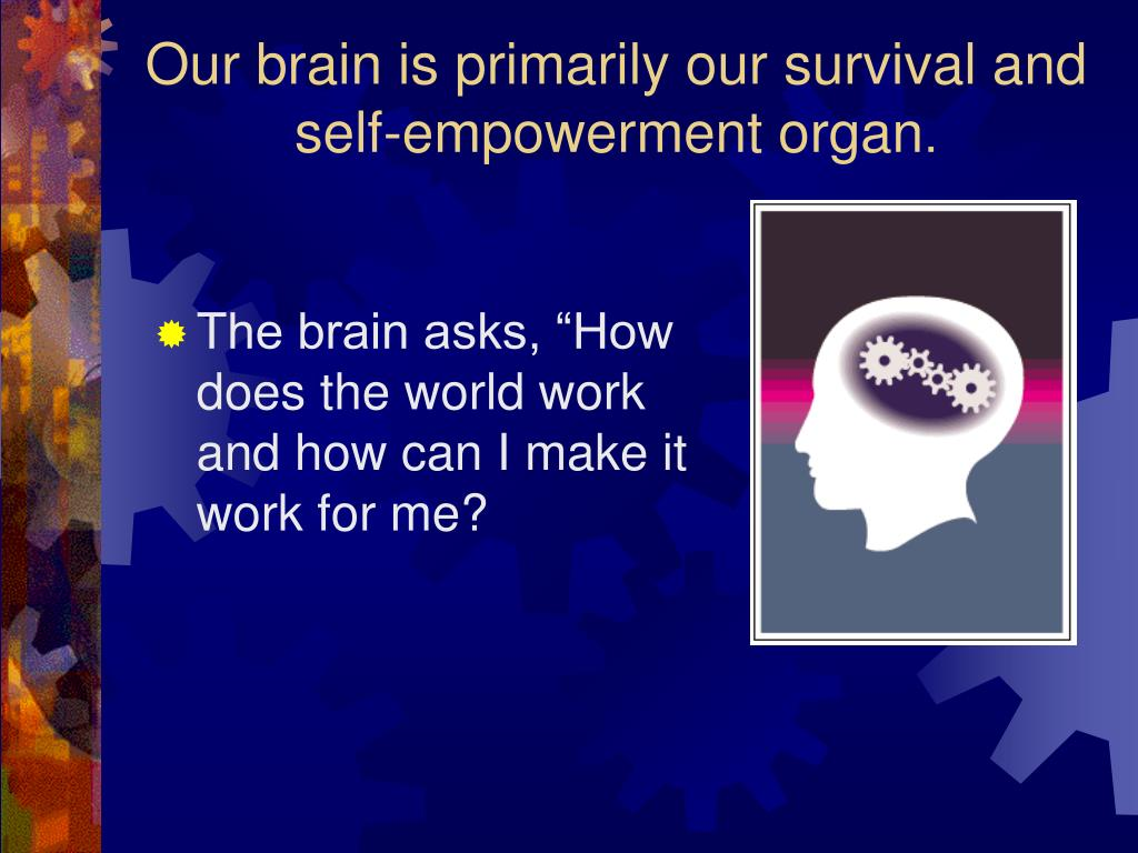 Our brain is primarily our survival and self-empowerment organ