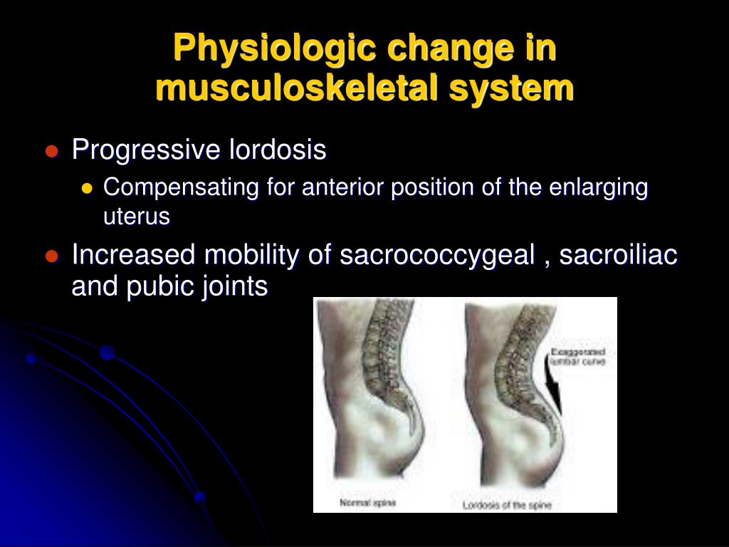 Physiologic change in musculoskeletal system