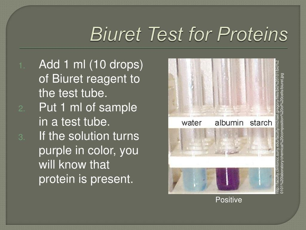 test for the presence of macromolecules Testing for the presence of macromolecules background: carbohydrates, lipids, proteins, and nucleic acids are organic molecules found in every living  lugol's solution can be used to test for the presence of the polysaccharide or starch in the presence of starch, the lugol's solution will change color from amber to a dark blue.