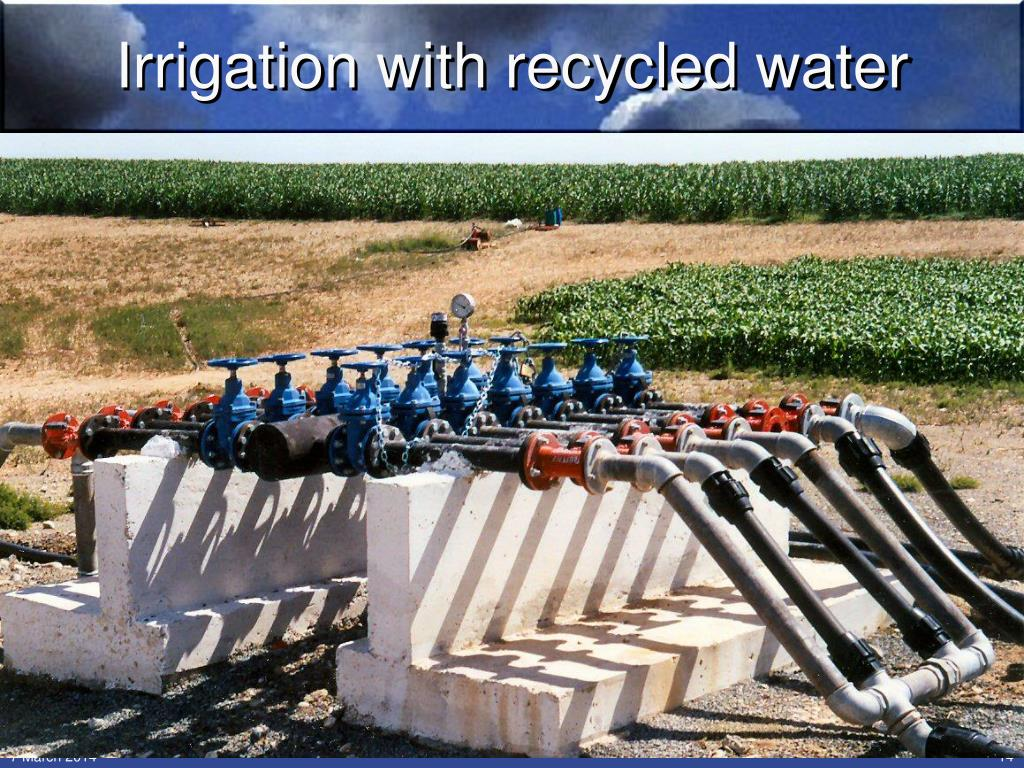 Irrigation with recycled water