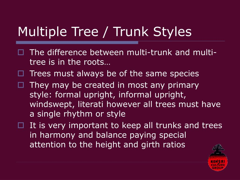 Multiple Tree / Trunk Styles