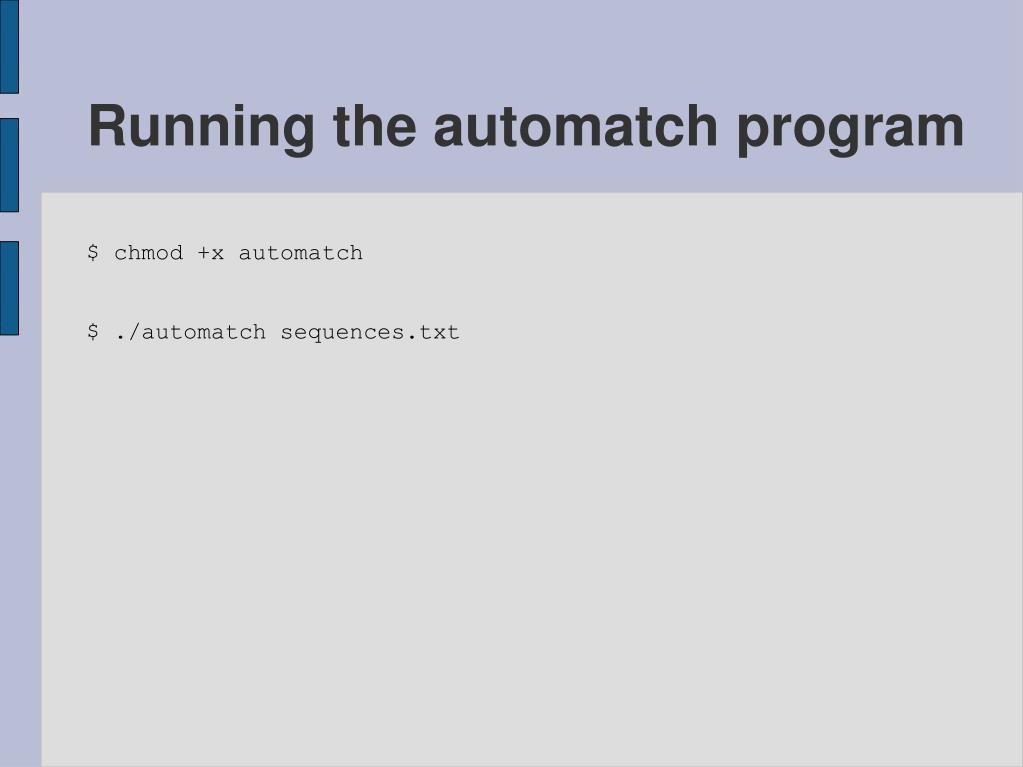Running the automatch program