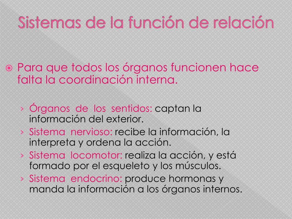 Sistemas de la función de relación