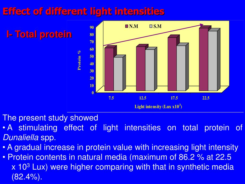 Effect of different light intensities