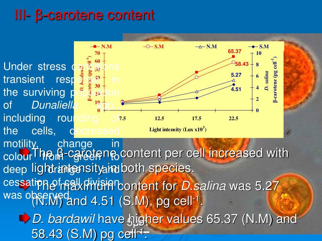 III- β-carotene content