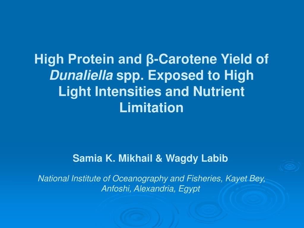 High Protein and β-Carotene Yield of