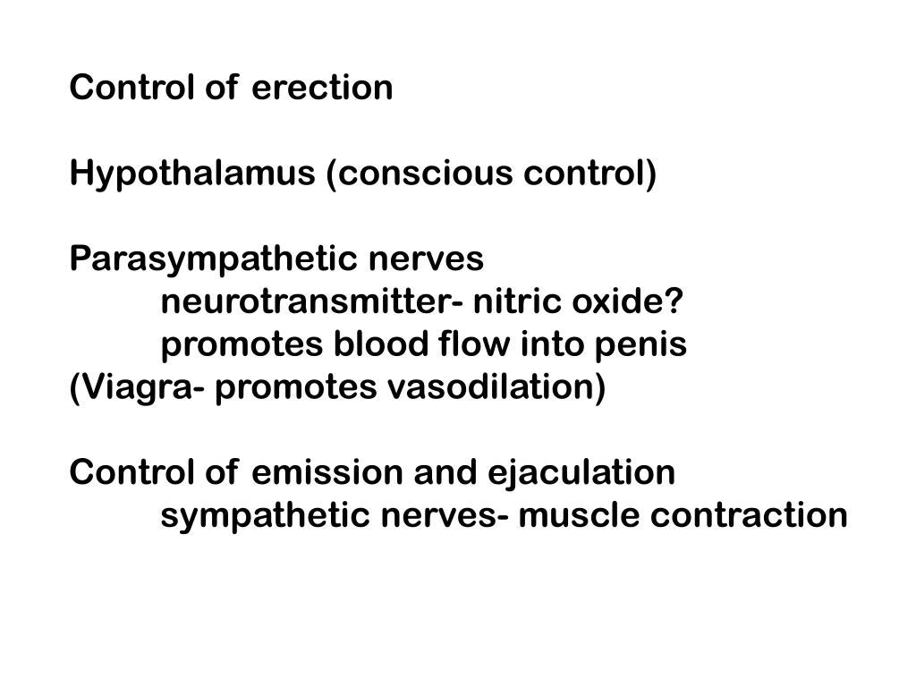 Control of erection