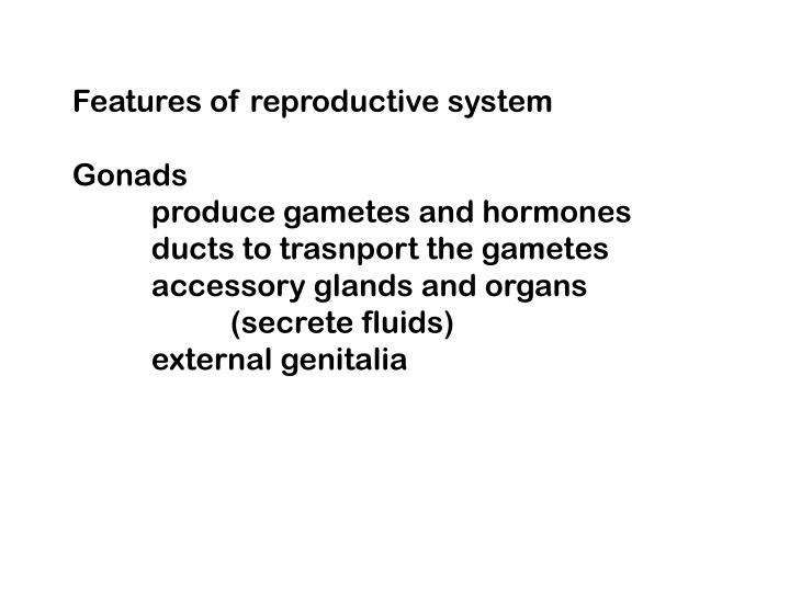 Features of reproductive system