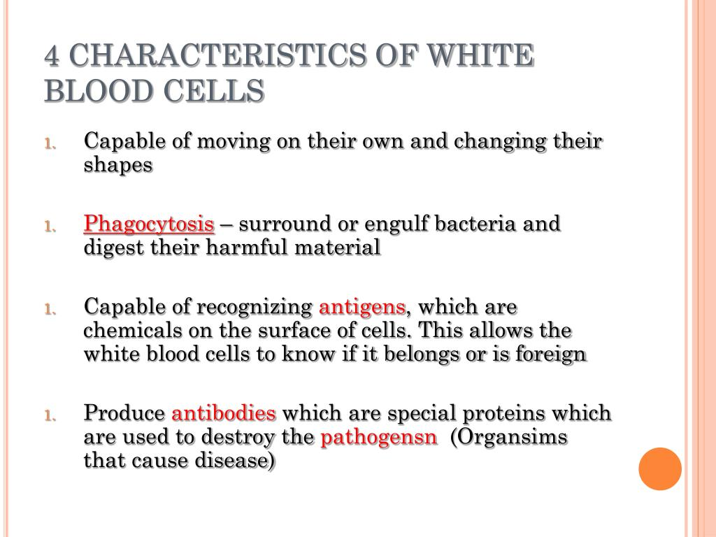 4 CHARACTERISTICS OF WHITE BLOOD CELLS