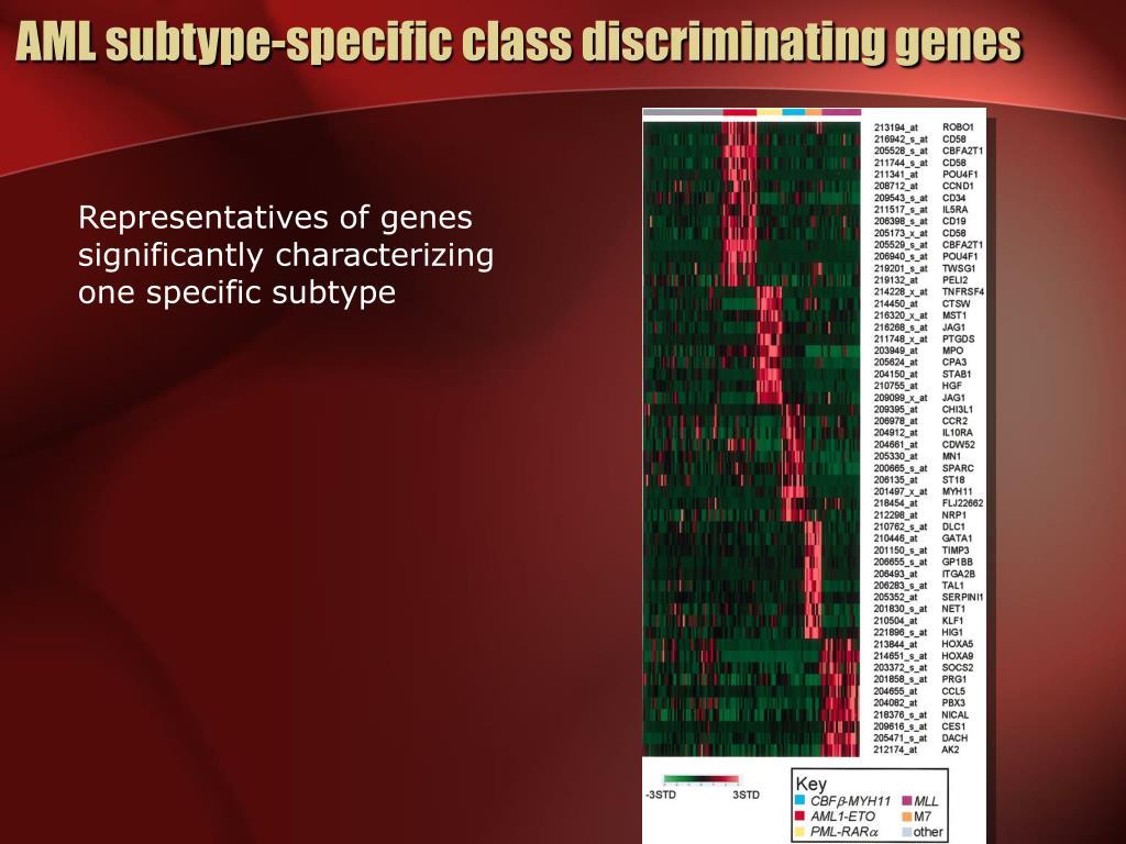 AML subtype-specific class discriminating genes
