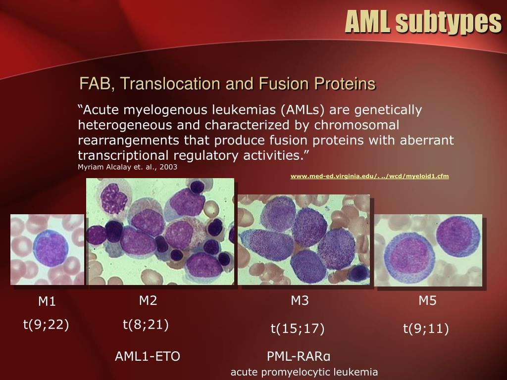 AML subtypes
