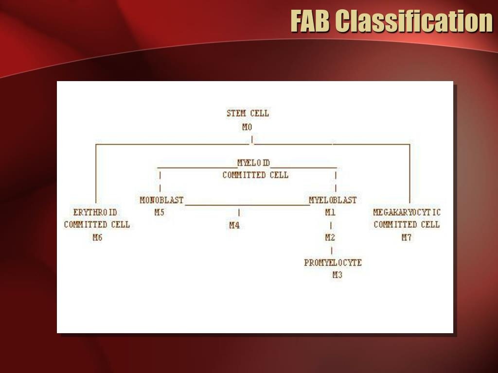 FAB Classification