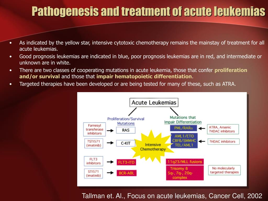 Pathogenesis and treatment of acute leukemias
