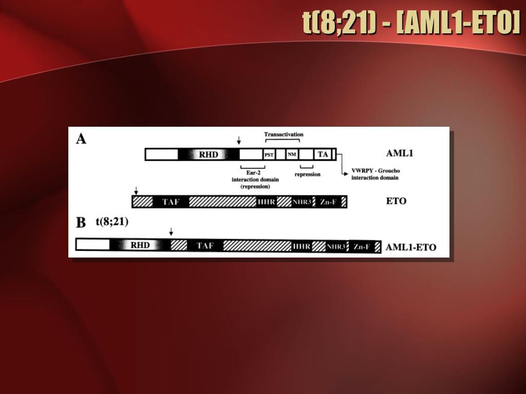 t(8;21) - [AML1-ETO]