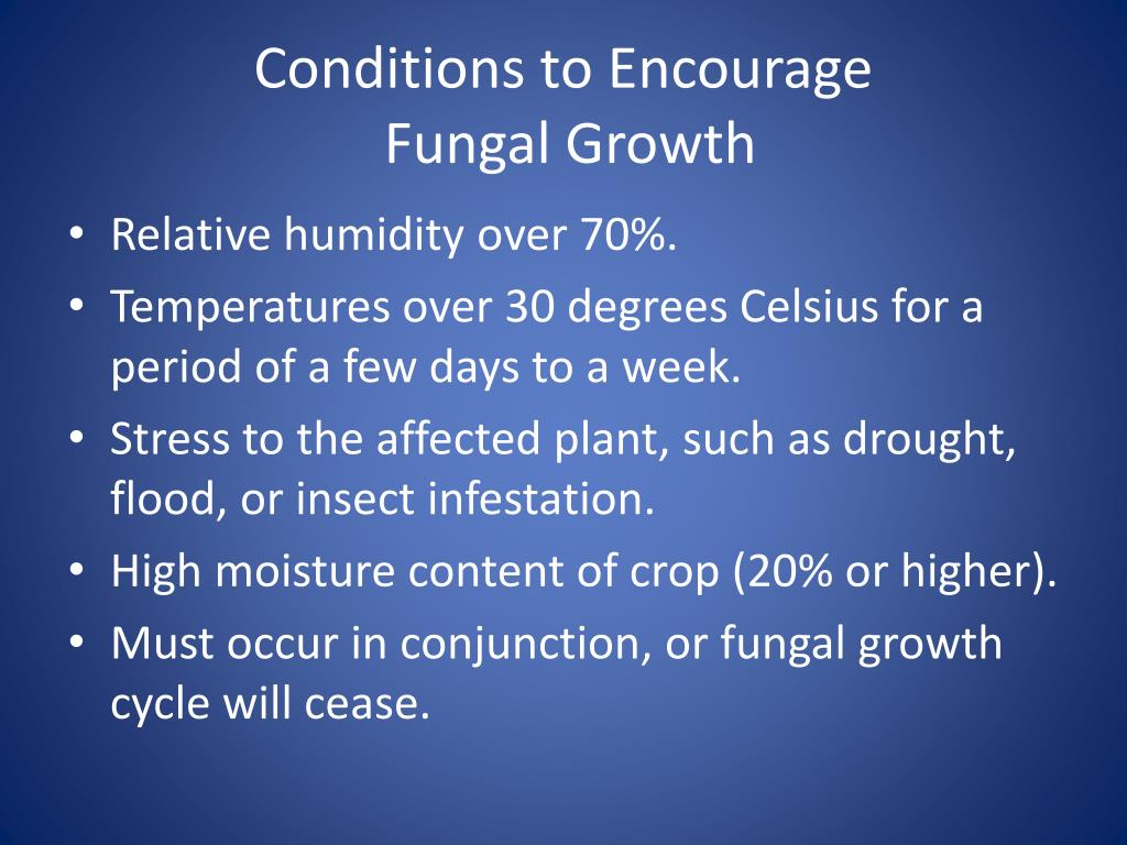 Conditions to Encourage