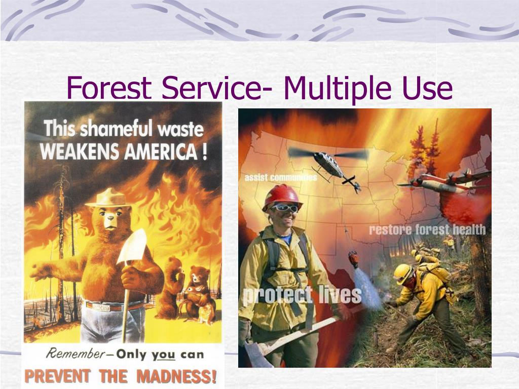 Forest Service- Multiple Use
