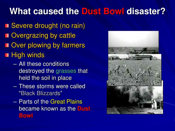 What caused the dust bowl disaster
