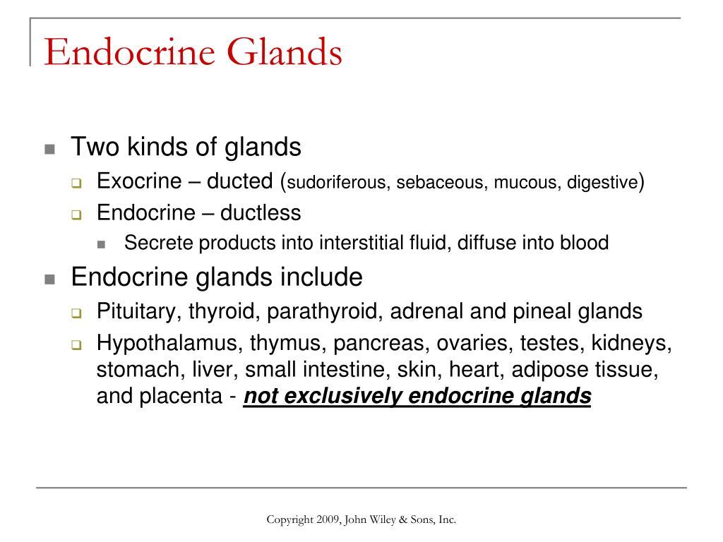 Endocrine System Chap 18 Essay Help Bbessaypxxi
