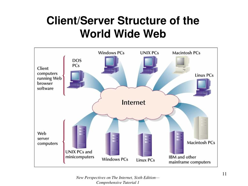 Client/Server Structure of the World Wide Web