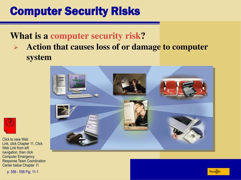 Computer Security Risks