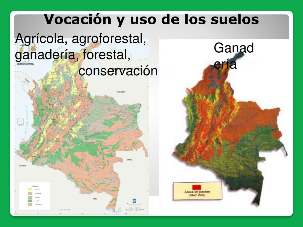 Agrícola, agroforestal, ganadería, forestal,