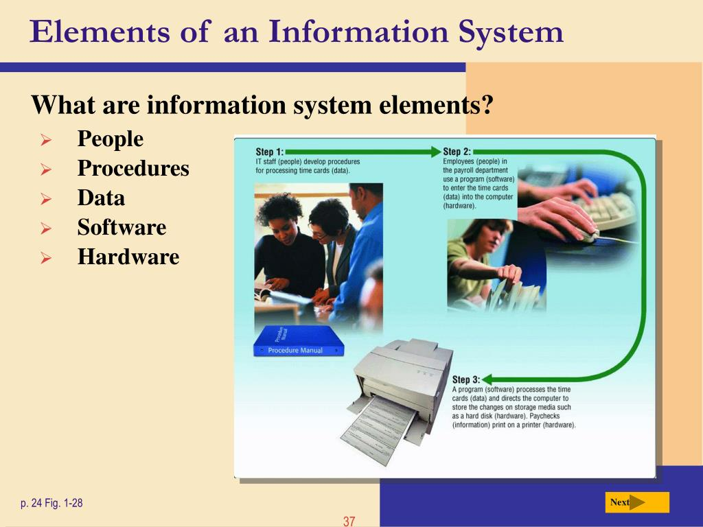 Elements of an Information System