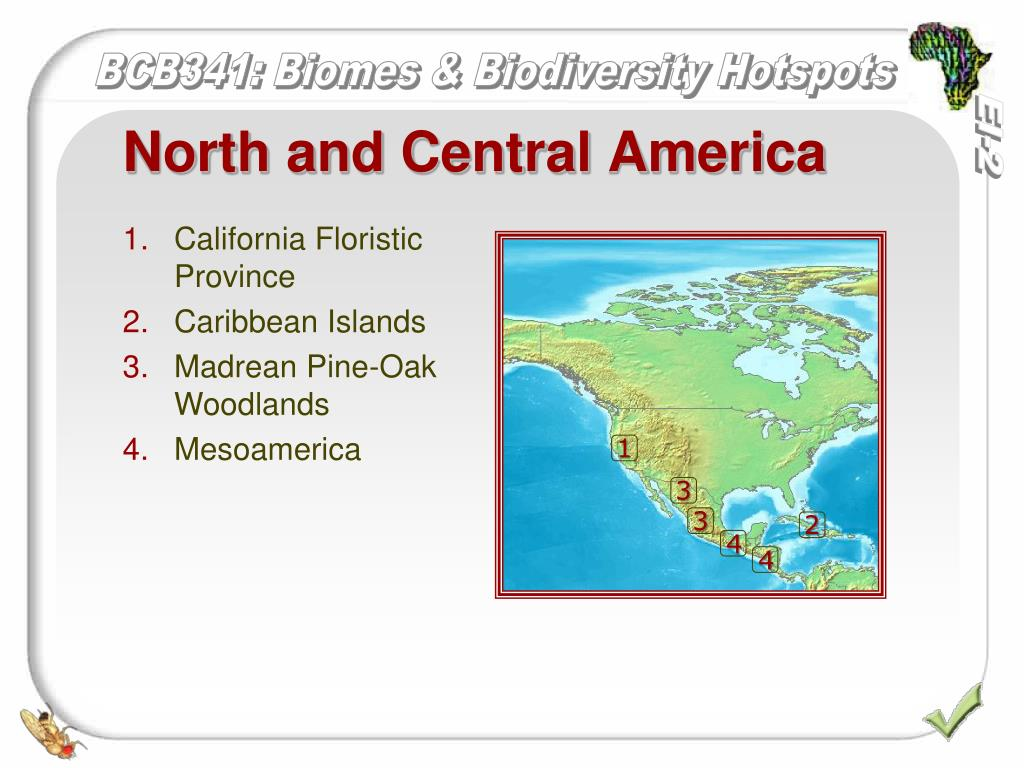 PPT Biomes eco regions and biodiversity hotspots PowerPoint Presentation
