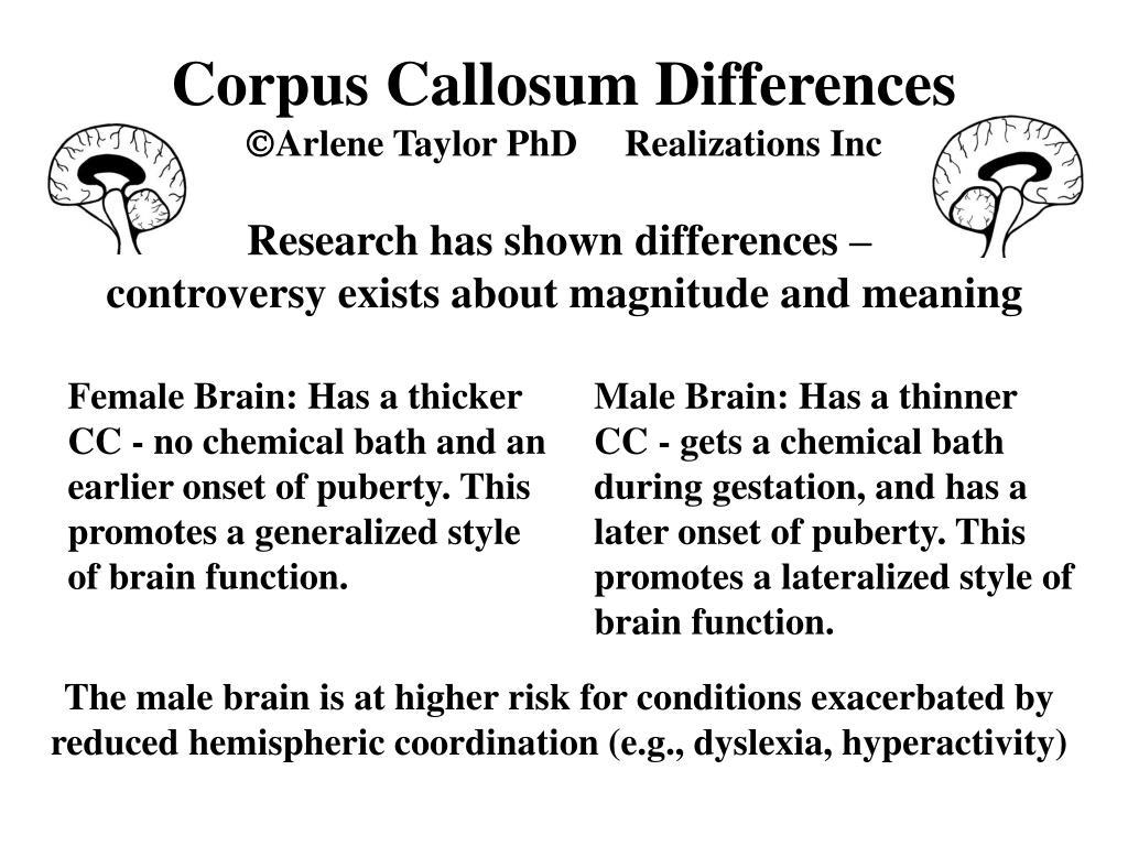 Corpus Callosum Differences